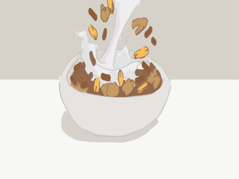 cereal_and_milk