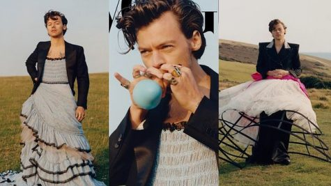 Harry Styles: The First to Defy Gender Norms?